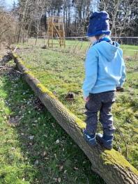 über den Baumstamm balancieren